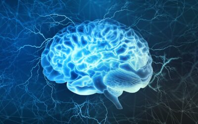 The Best Brain Hacks